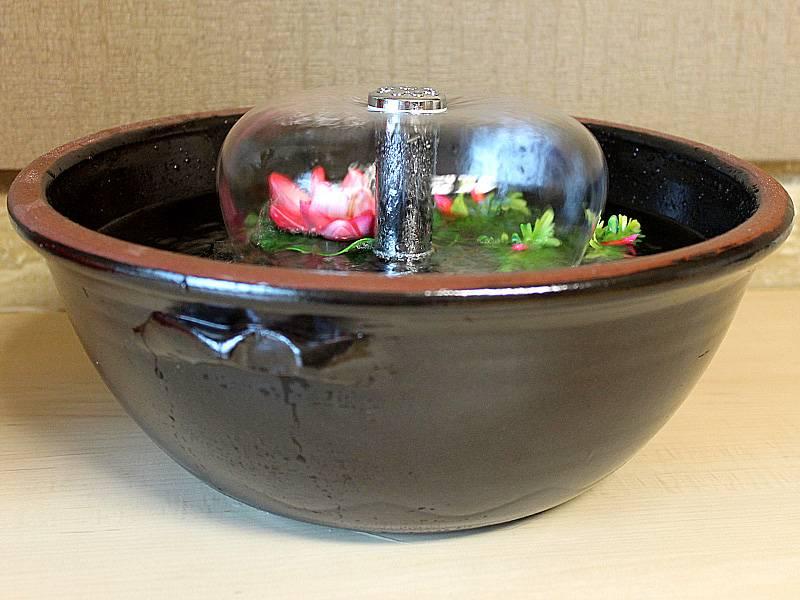 고양이 물그릇에 있는 물이 줄지않네? 결석 조심하자ㅠㅠ! | 인스티즈