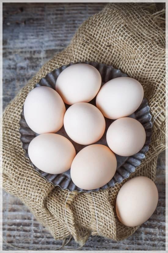 계란이랑 같이 먹으면 절대 안된다는 음식 | 인스티즈