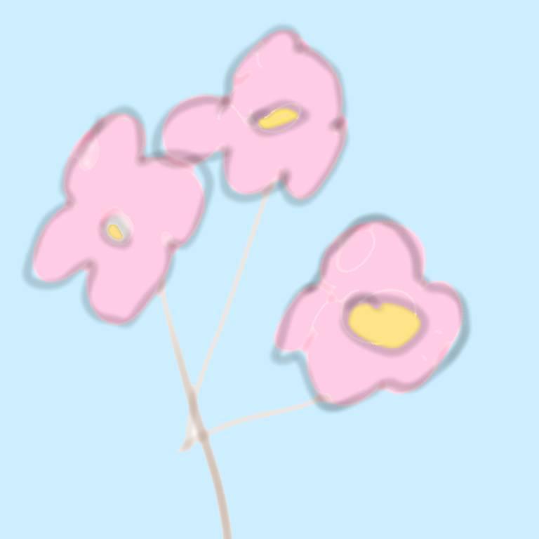 지금 한강에 벚꽃보러왔다^^♥ | 인스티즈