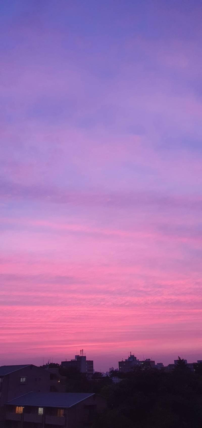 와 하늘 예술이다 | 인스티즈