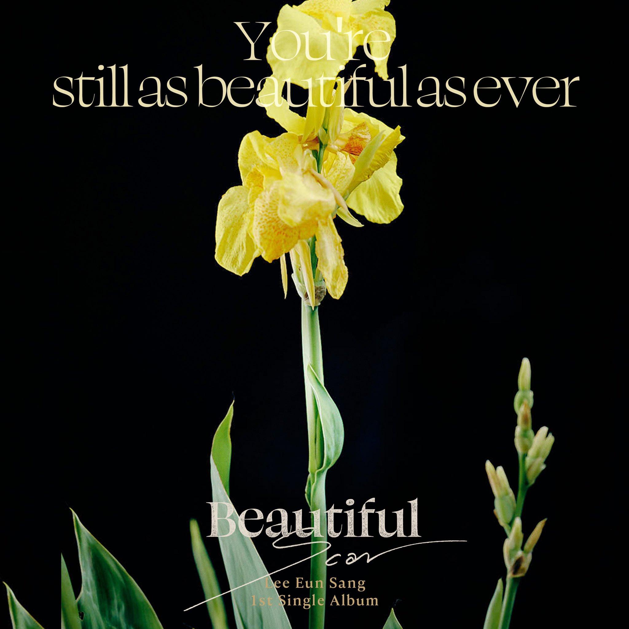 31일(월), 🍎이은상 솔로데뷔 1st Single Album <Beautiful Scar> 발매🍎 | 인스티즈