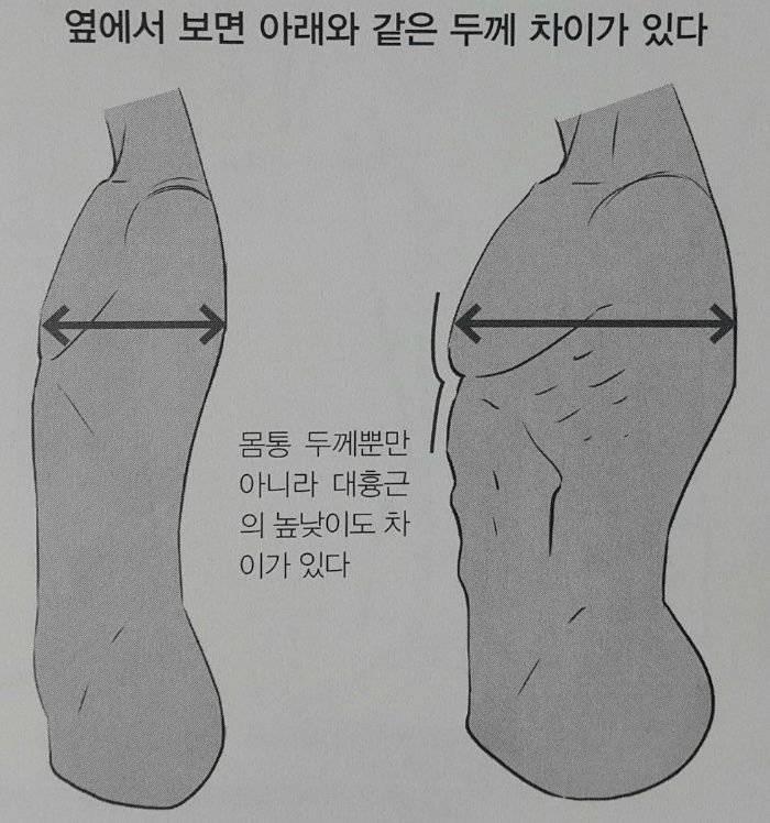 허리통 굵고 옆통크고 어깨넓은 장사체형 호? 불호? | 인스티즈