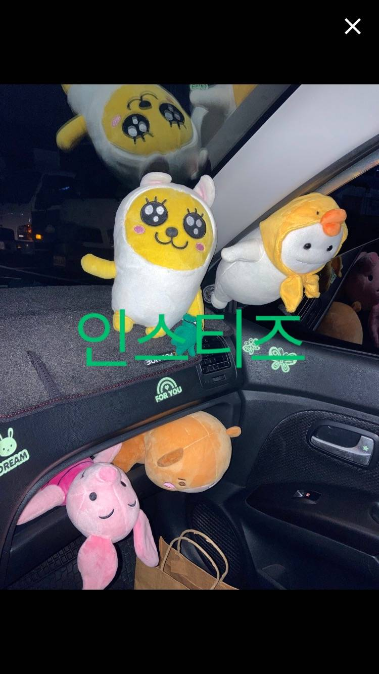 당근마켓 무지랑 지방이 직거래 후기 !! | 인스티즈