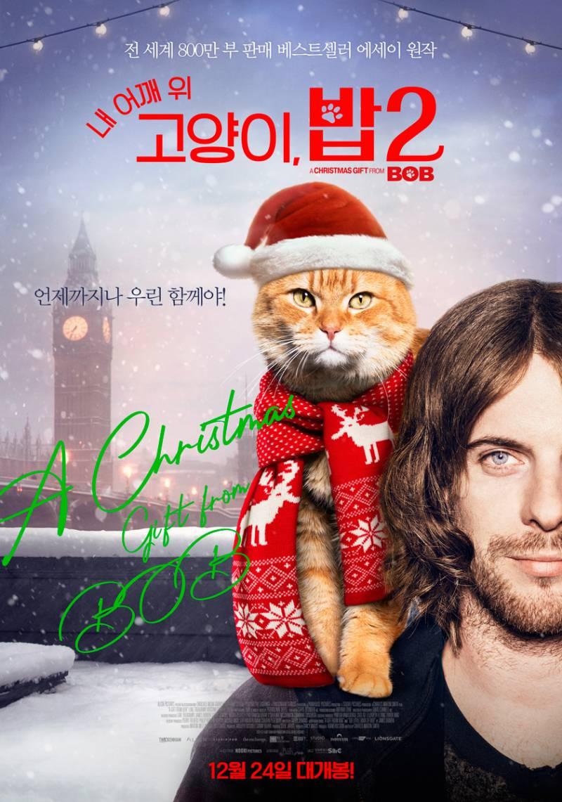영화 '내 어깨 위 고양이, 밥 2' 시사회에 회원 여러분을 초대합니다 | 인스티즈