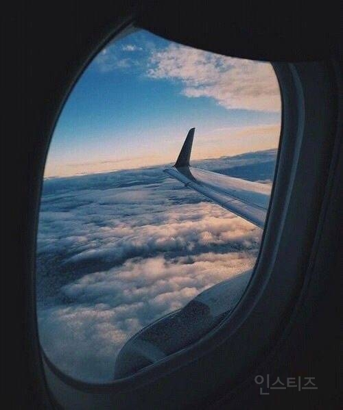 평생 비행기 공짜 vs 평생 택시 공짜 | 인스티즈