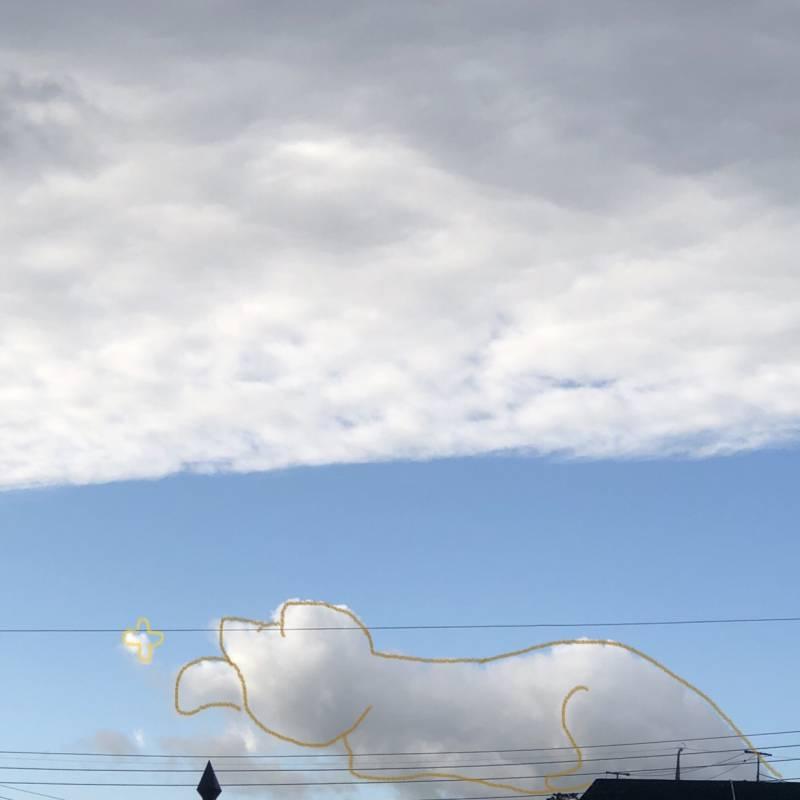 오늘 넘 고양이같은 구름 봤담...   인스티즈