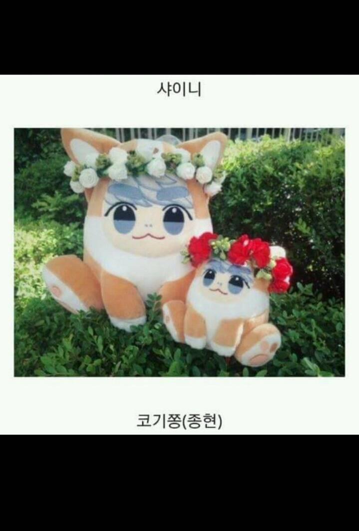 요즘 아이돌 팬덤내 유행하는 문화.jpg | 인스티즈