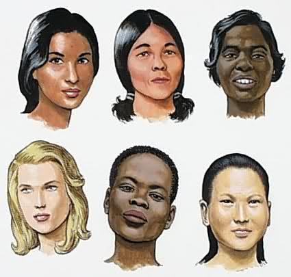 인간의 피부색은 왜 밝아졌을까??   인스티즈