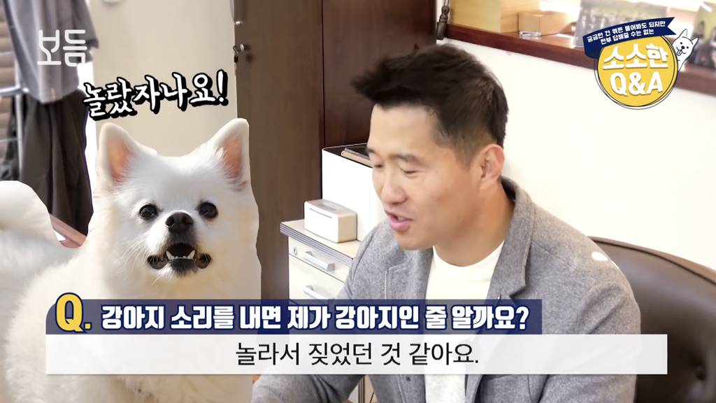 [강아지강씨] 강아지 소리를 내면 제가 강아지인 줄 알까요? | 인스티즈