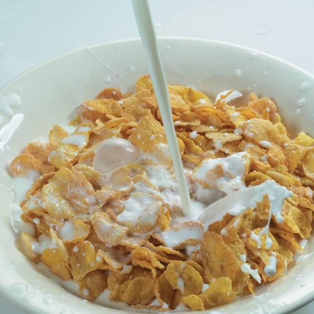 여러분들의 아침식사 성향 조사 | 인스티즈