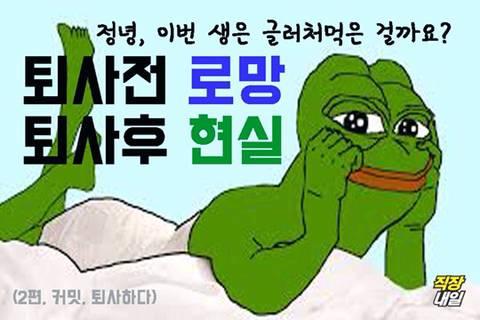 퇴사 생각 접게만드는 퇴사 개구리 | 인스티즈