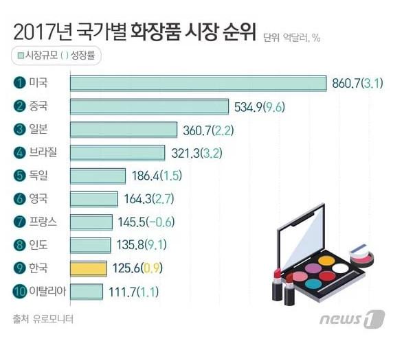 2017년 국가별 화장품 시장 순위 | 인스티즈