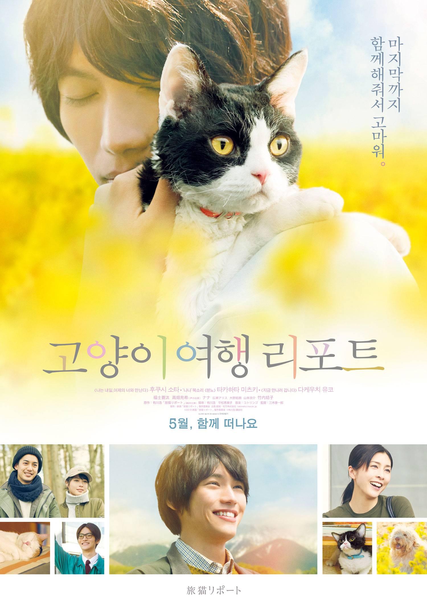 영화 '고양이 여행 리포트' 시사회에 인스티즈 회원 여러분을 초대합니다 | 인스티즈