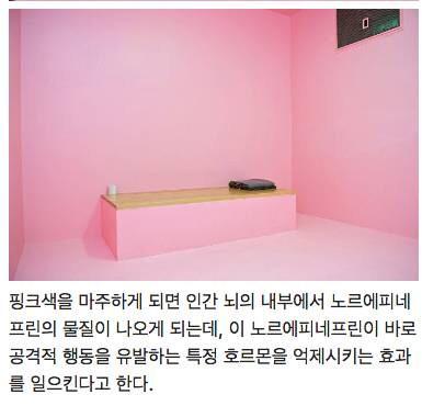 핑크색 교도소.jpg | 인스티즈