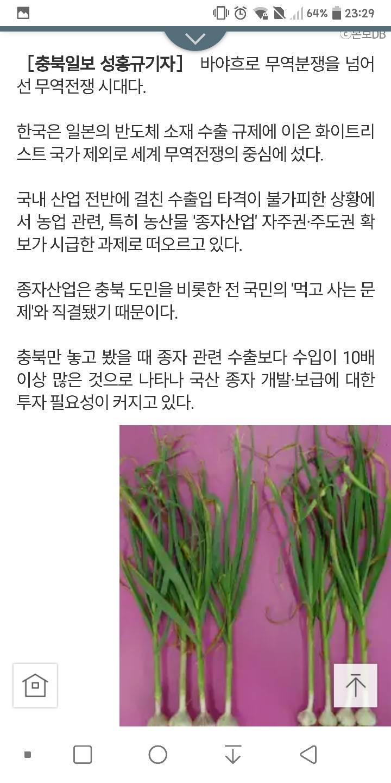 양파 양배추 팽이버섯 사먹으면 일본에 로열티 수십억 | 인스티즈
