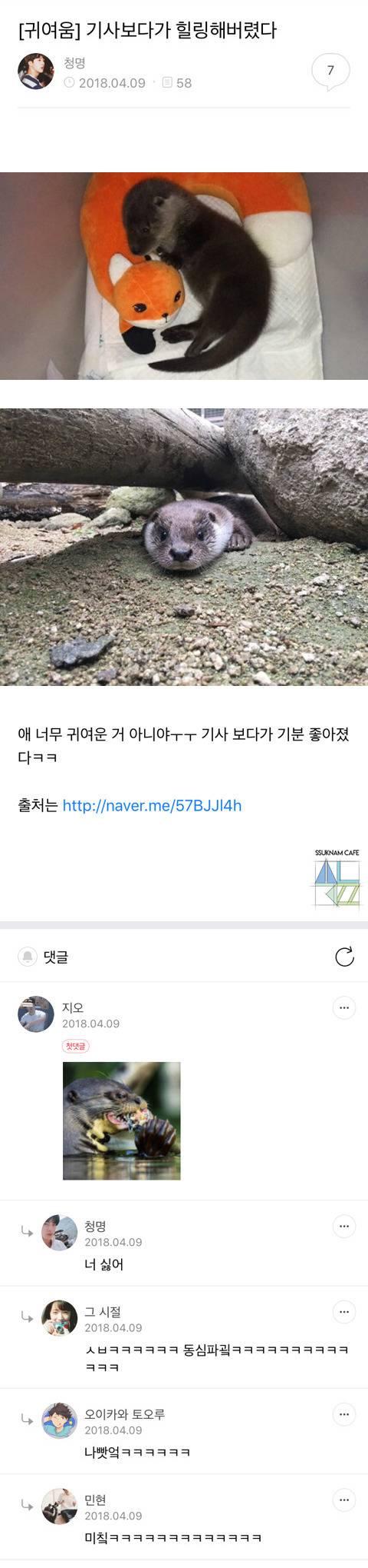 쑥남들의 쑥스러운 캡처-40 | 인스티즈