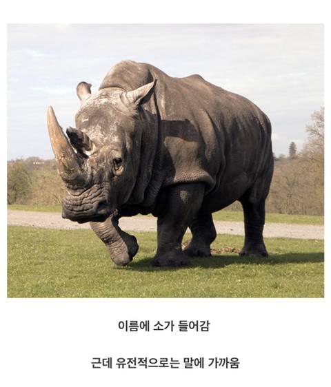 동물 유전자의 신비.jpg | 인스티즈