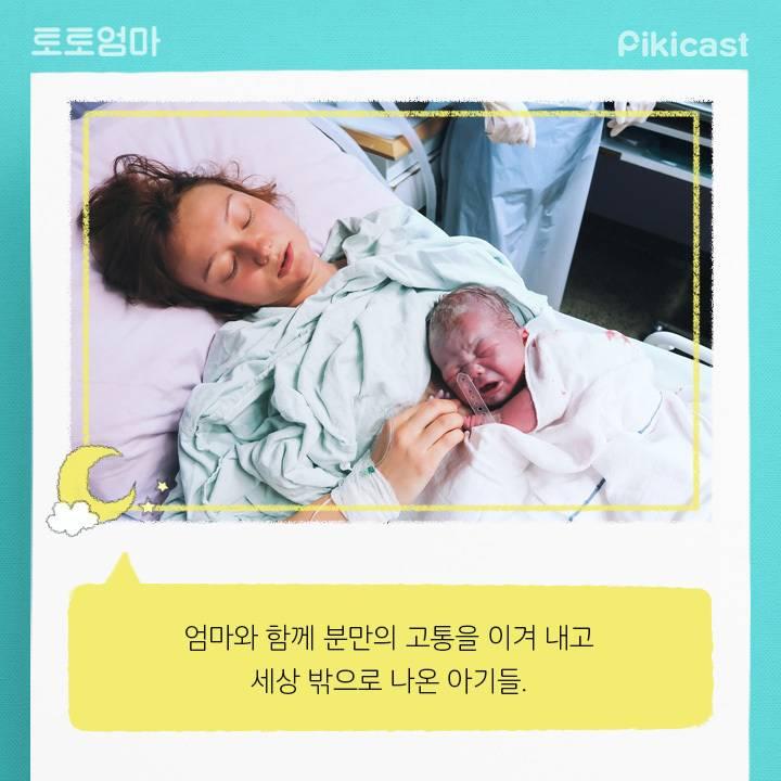 엄청바쁘다는 신생아의 24시간   인스티즈