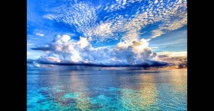 앙드레 가뇽의 바다 위의 피아노 | 인스티즈