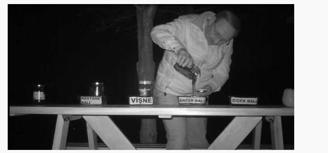 양봉장 꿀 훔쳐먹는 곰 대처법.jpg | 인스티즈