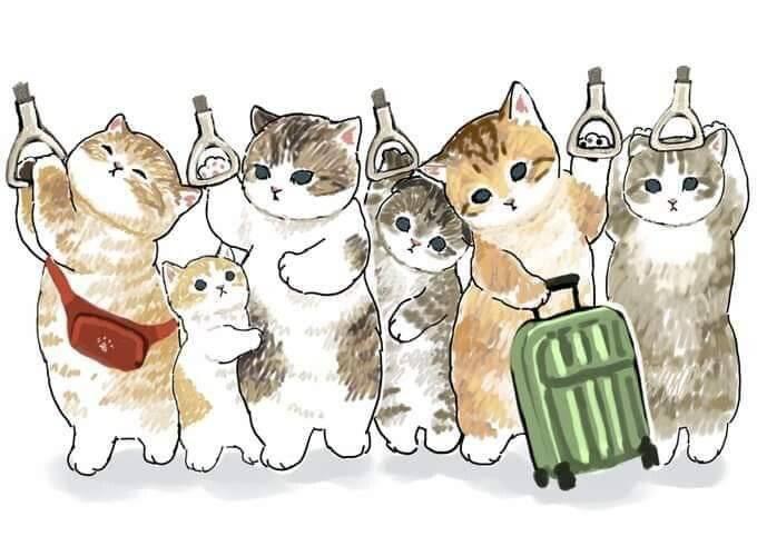 만약 고양이가 사람처럼 출근한다면.jpg | 인스티즈