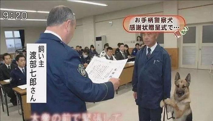 아빠 손잡고 떨면서 표창장 받으러 간 경찰견.jpg | 인스티즈
