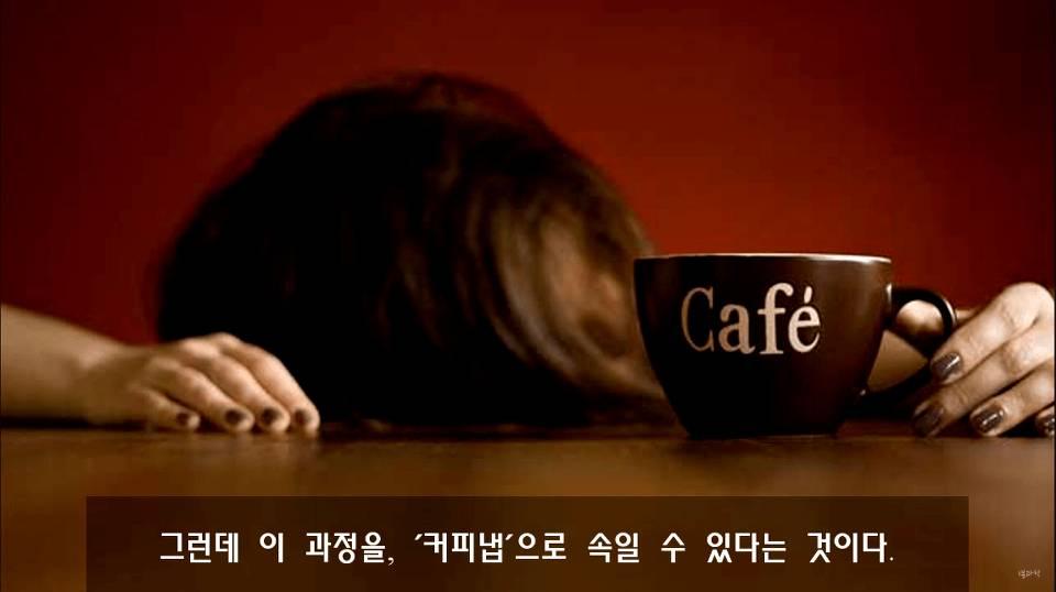 낮잠 잘 때 커피를 마셔야 하는 이유 | 인스티즈