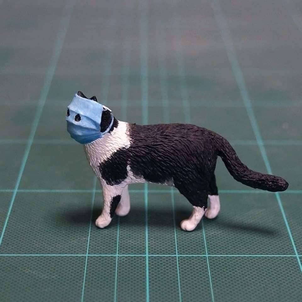 우한폐렴 고양이 피규어로 만들다 | 인스티즈