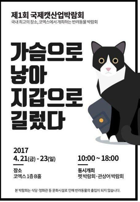 논란이 된 고양이 박람회 포스터   인스티즈
