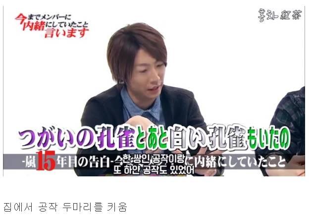 일본 최고 인기 아이돌그룹 아라시의 재산 규모   인스티즈
