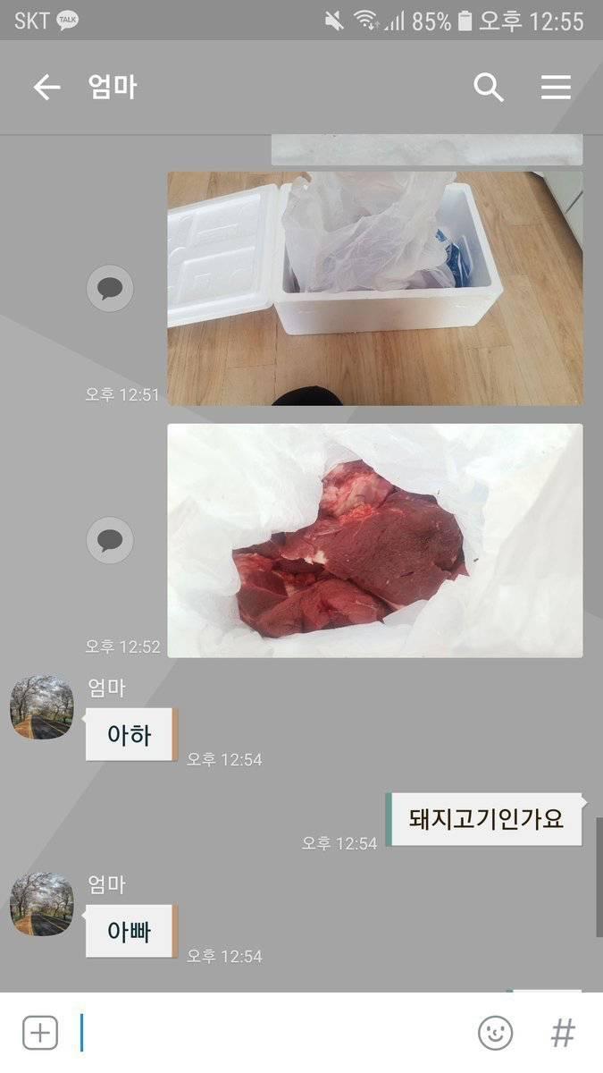 집으로 배송 온 고기의 정체.JPG   인스티즈
