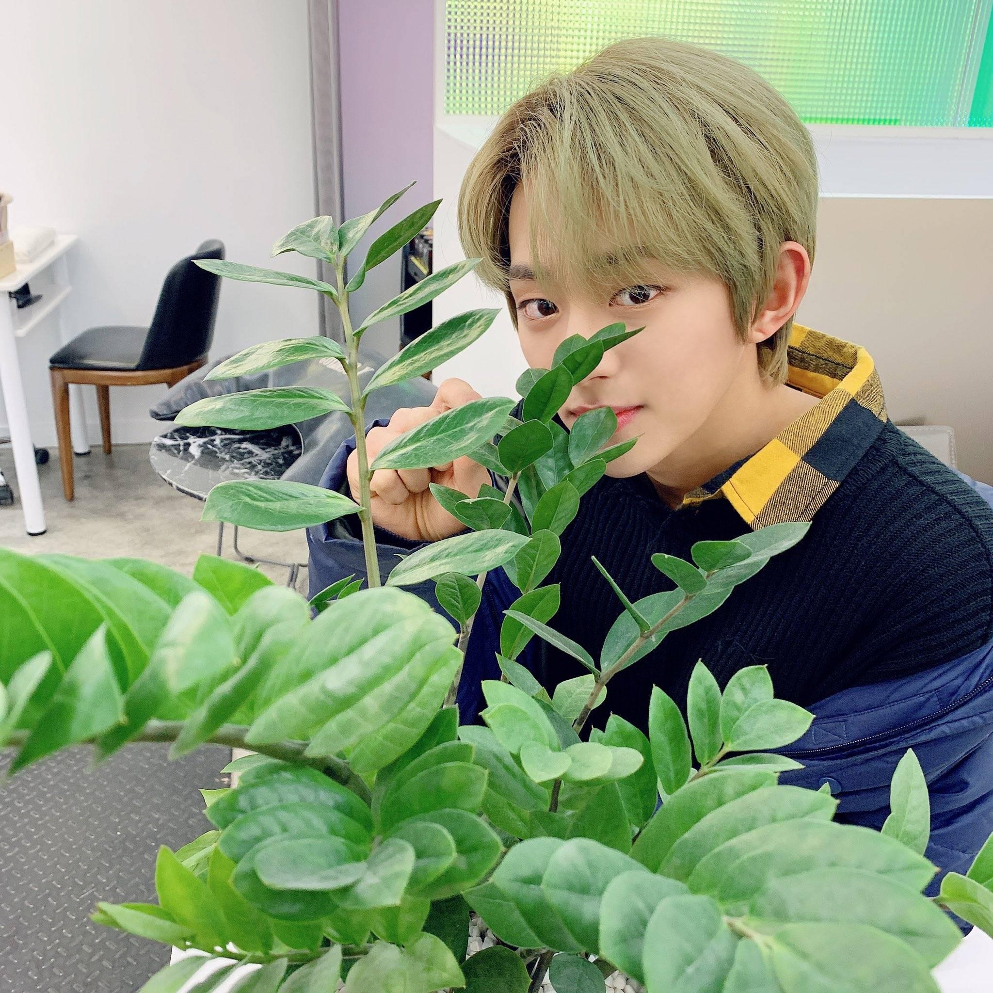 어울리기 힘들다는 초록머리로 데뷔한 아이돌.jpg | 인스티즈