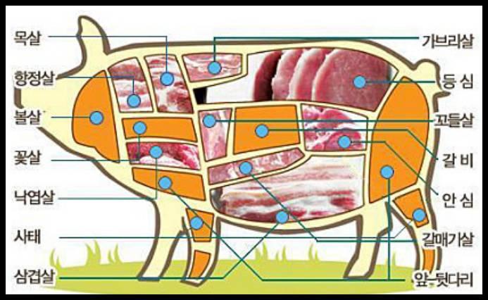 돼지고기 고르는 팁 | 인스티즈