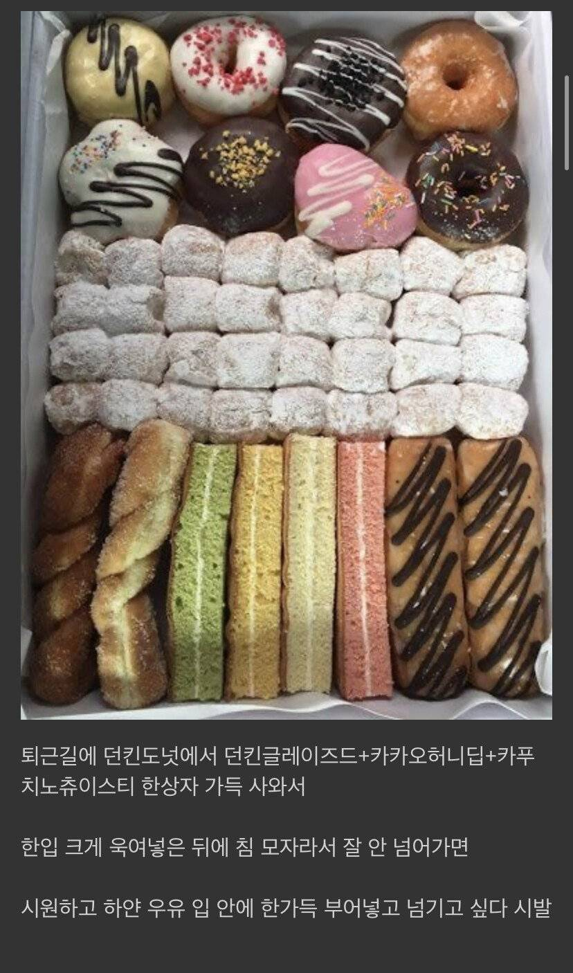 디씨 당뇨병 환자의 음식 묘사 수준 ㄷㄷㄷ.jpg | 인스티즈