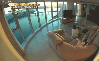 부산 아파트 오션뷰 vs 서울 아파트 한강뷰 느낌 차이 | 인스티즈