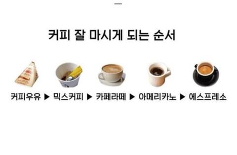 커피 잘 마시게 되는 순서 | 인스티즈