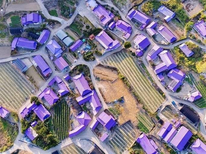 전라남도 신안군의 컨셉 마을 | 인스티즈
