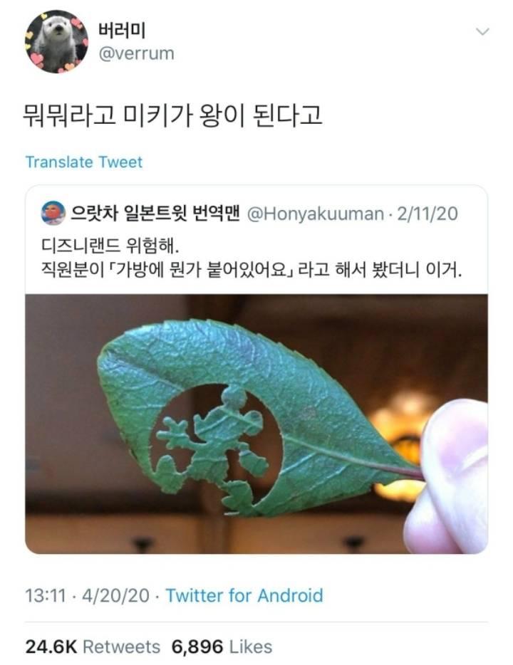 한국인들이 보면 흠칫할 나뭇잎.jpg | 인스티즈