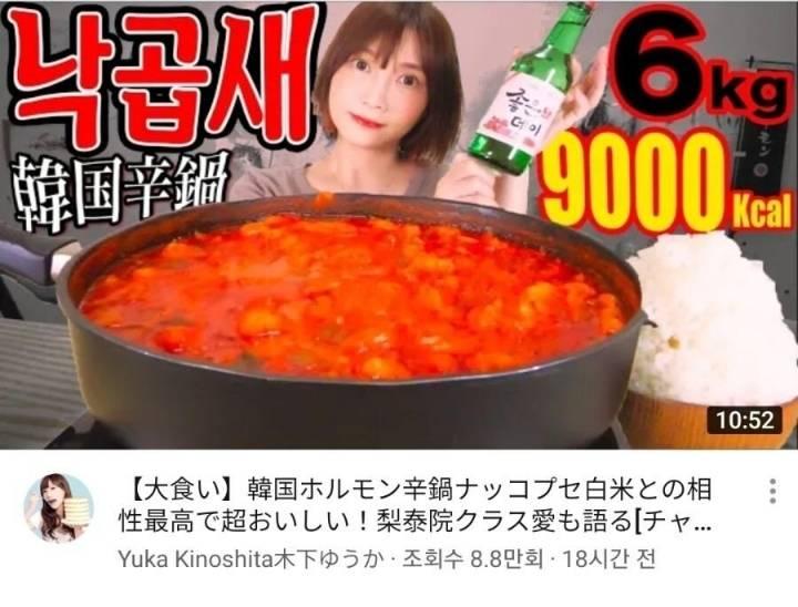 낙곱새에 쐬주 때린 일본 유투버의 고정 댓글   인스티즈