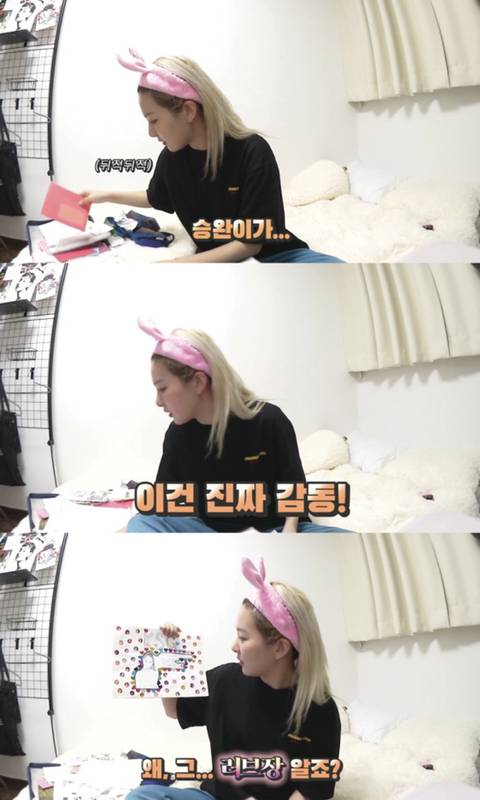 레드벨벳 슬기가 밝힌 보물 1호 생일선물 | 인스티즈