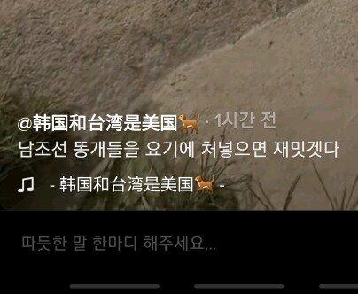 중국 조선족들 속마음 그대로 보여주는 틱톡 | 인스티즈