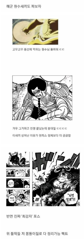 원피스 세계관 최강자 jpg ((스포)) | 인스티즈