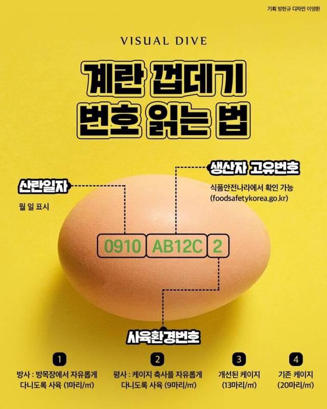 계란 껍데기 번호 읽는 법.jpg   인스티즈