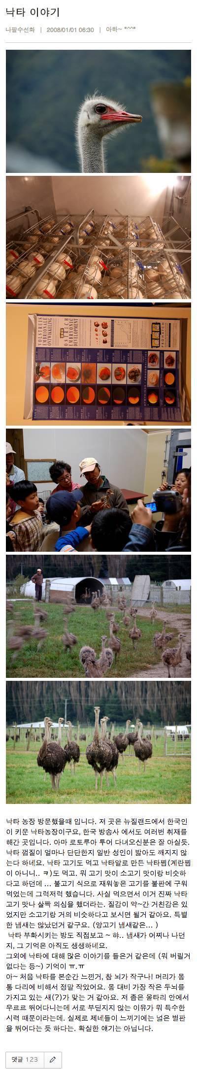 낙타농장 방문후기 | 인스티즈