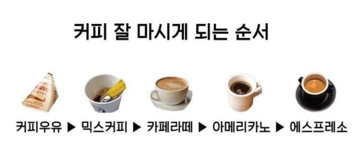 커피 잘 마시게되는 순서 | 인스티즈