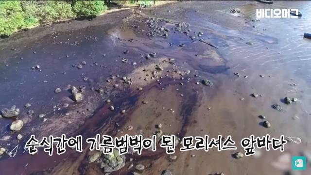 일본 선박 때문에 역대 최악의 환경재해를 겪고 있는 모리셔스.jpg | 인스티즈