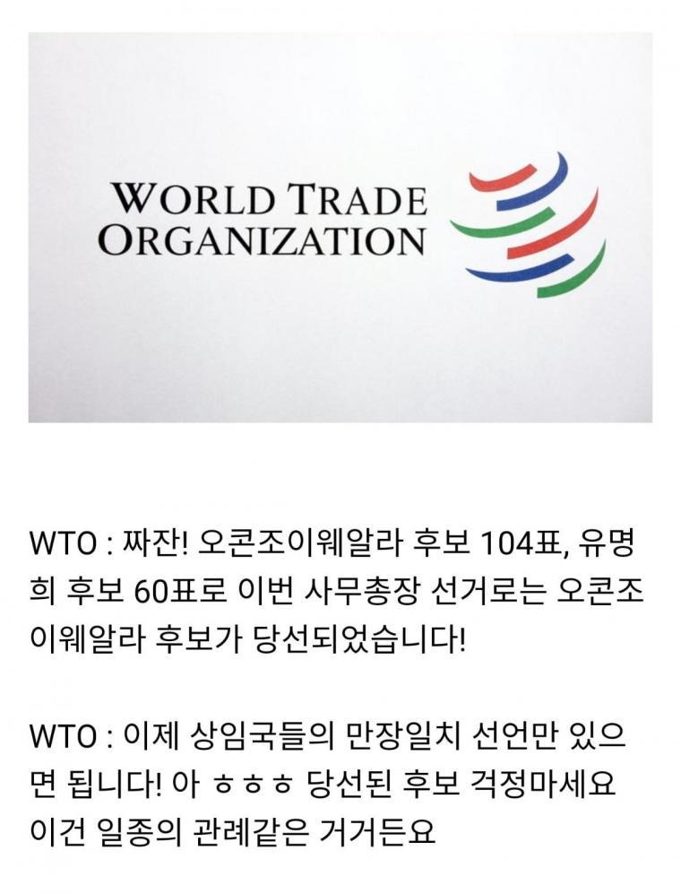미국vs중국 싸움으로 번진 WTO 선거   인스티즈
