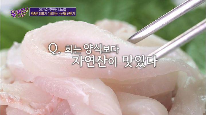 [유퀴즈] 회는 양식보다 자연산이 맛있다? | 인스티즈
