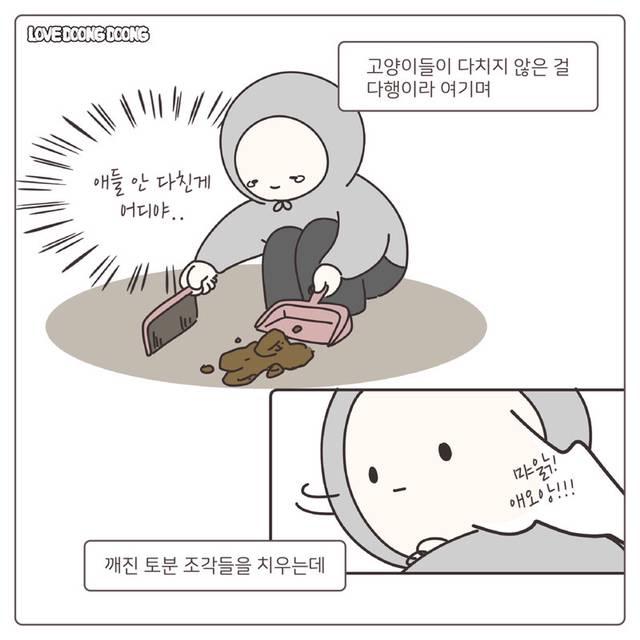 사고쳐서 형한테 혼나는 고양이.manhwa | 인스티즈