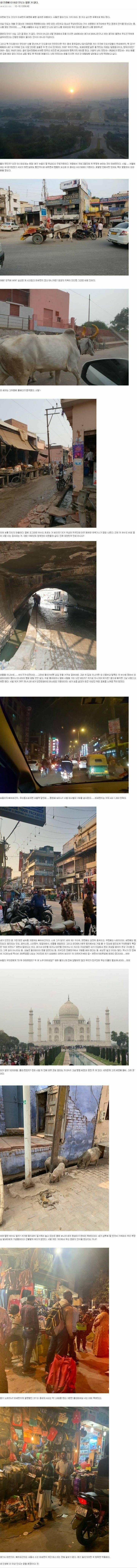 인도여행후기 | 인스티즈